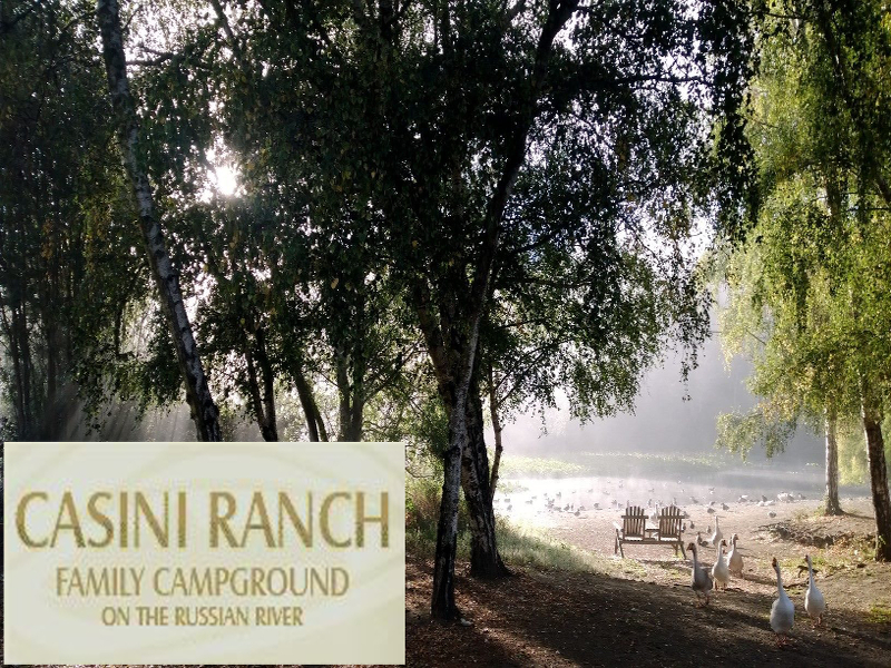 Casini Ranch Family Campground. Click for details about this park and see their personal website!